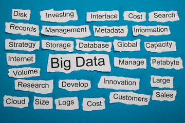 Word Big Data On Piece Of Torn Paper