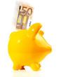 Sparschwein 50 EURO Geldschein