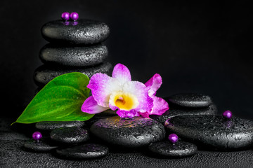 spa concept of purple orchid flower, green leaf, pyramid zen bas