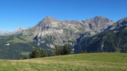 Beautiful mountains near Gstaad