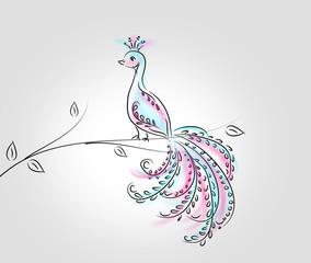 Peacock on twig of tree