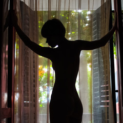 Outlines of a beautiful woman standing by door