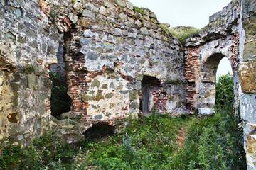 ruins of an ancient Ukrainian  castle