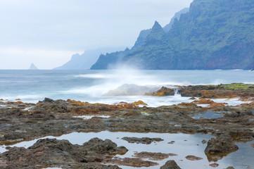Coast of Punta del Hidalgo. Tenerife