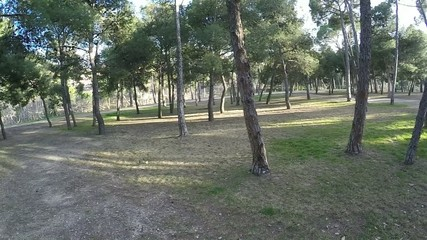 circular motion around the park with trees on a sunny day