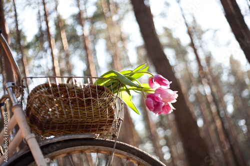 Fotobehang Fiets Old bicycle with flowers in basket, the woods