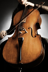 Cello close up musical instruments