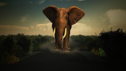 3D elephant walking towards camera