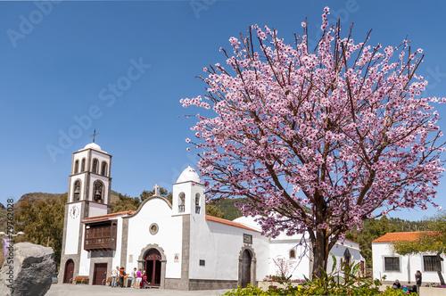 Leinwanddruck Bild Main square of Santiago del Teide and almond tree