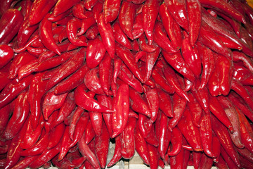Traditional hungarian peppers paprika for sale