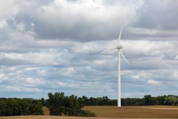 Single wind turbine in a corn field