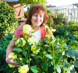 Woman in the garden cares for flowers