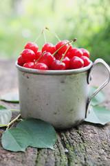 cherries in an old  mug