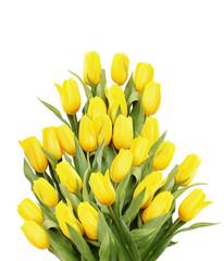 Big beautiful bouquet