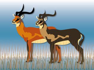 two uganda-kob in the marsh illustration