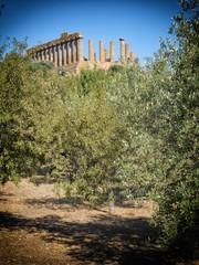 Greek ruins,