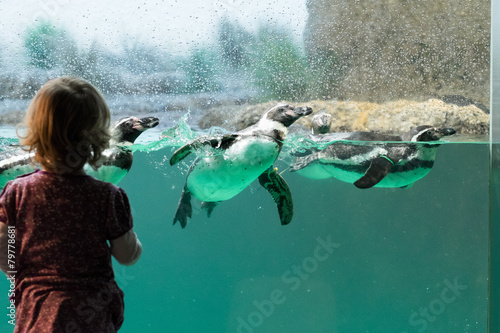 In de dag Pinguin Kind vor Pinguinaquarium