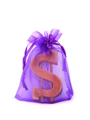 gift dollar symbol in a transparent bag
