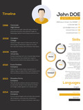 Contrast resume cv design - 79782221