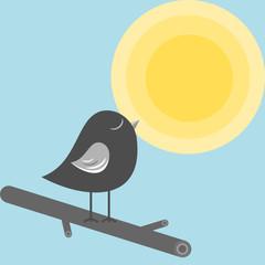 vögelchen beim sonnenbaden II