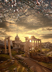 Roman ruins with blossomed tree in Rome, Capital city of Italy