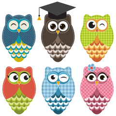 Set with owls