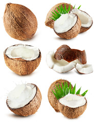 set of coconuts isolated on the white background