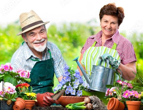 Senior couple in the flower garden - 79790248