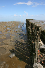 Detail of a Breakwater at the wadden sea border