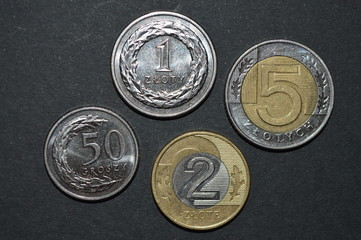 zloty coin polish money pln front side