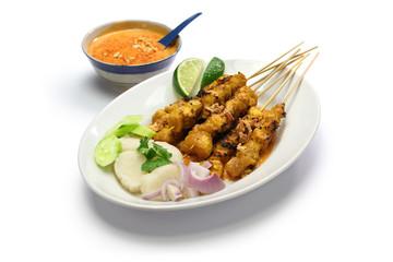 chicken satay, indonesian skewer cuisine
