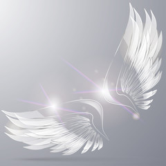 Glass Wings 3 d vector for decoration