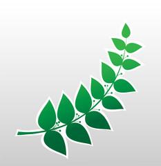 laurel branch, symbol of victory