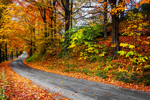 Fall in New England winding road with colorful leaves. Vermont