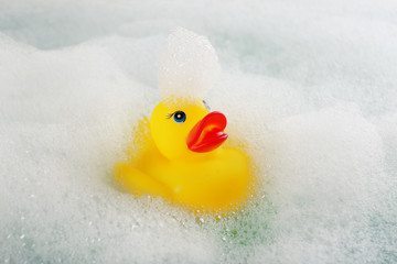 Rubber duck in foam close-up