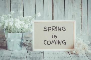 Spring is coming message on corkboard and potted flower by woode