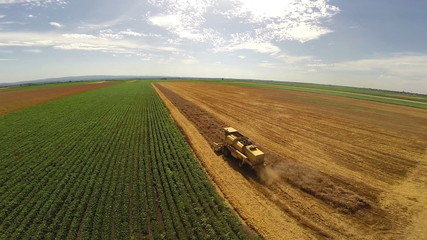 Aerial flight over combine harvesting the yellow wheat rows