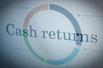 "Inscription ""Cash returns"" on PC screen."