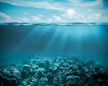 """Постер, картина, фотообои """"Sea or ocean underwater deep nature background"""""""
