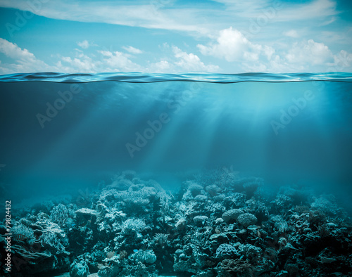 Keuken foto achterwand Zee / Oceaan Sea or ocean underwater deep nature background