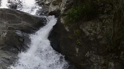 Cedar Creek Waterfall in Mount Tambourine.