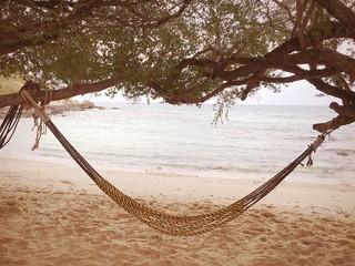 swing beach sea