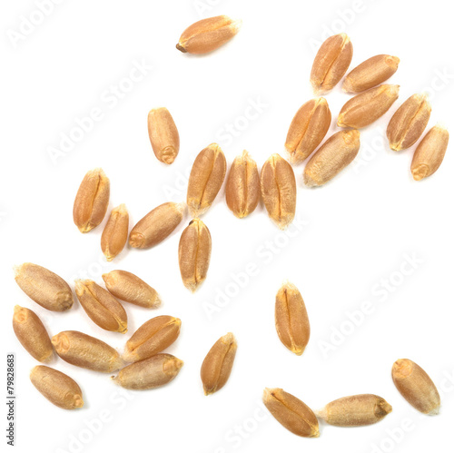 Fotobehang Granen wheat grain