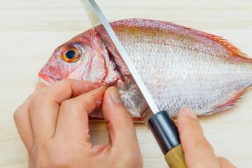chop off the head of a Japanese sea bream (Tai)