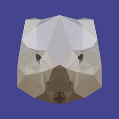 abstract geometric polygonal wombat background