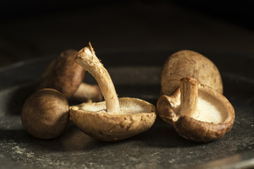 Fresh shiitake mushrooms in moody natural light setting with vin