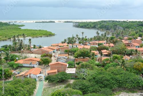 Tuinposter Centraal-Amerika Landen Mandacaru