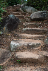 Rural steps