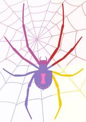Araignée pop art