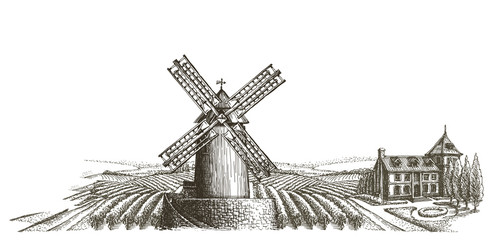 farm. harvest on a white background. sketch
